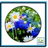 Семком профи цветы