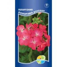 Пеларгония Колорама розовая 5шт Акв