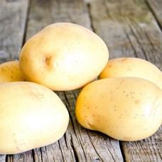 Картофель Импала 1 репр фас. 2кг
