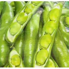 Бобы Белорусские овощные 10г б/п Аэлита