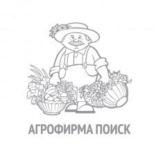Морковь Осенний король 2г б/п ПП