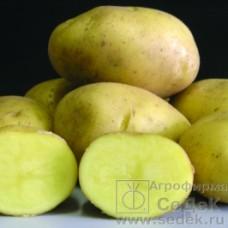 Картофель Баллада 0,02г СД