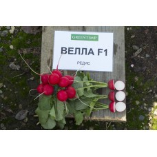 Редис Велла F1 (500г) Greentime