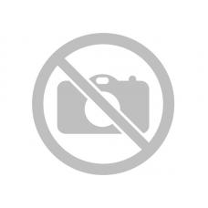 Арбуз Голден Тайгер F1 (1000шт) CL